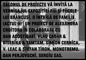 http://salonuldeproiecte.ro/files/gimgs/th-15_SdP_TAE_web_v4.jpg