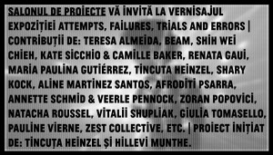 http://salonuldeproiecte.ro/files/gimgs/th-15_attemps-failures_website_v3.jpg