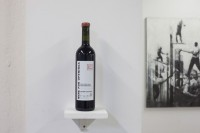 http://salonuldeproiecte.ro/files/gimgs/th-21_44_ Ivan Moudov - Wine for openings, ediție specială, 2014.jpg