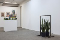 http://salonuldeproiecte.ro/files/gimgs/th-40_51_ Vlad Nancă - Commune sense (reflexion on vicinity), 2013 - mixed media (window  frame, Sansevieria trifasciata plants), 90 x 63 x 47 cm.jpg